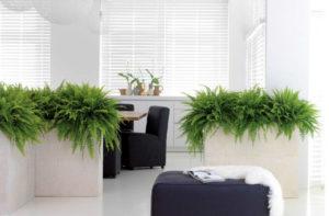 """Collection Résine """"DLite"""" - Bac à plantes décoratif par Florabora"""